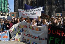 #Fridaysforfuture in Köln am Dom