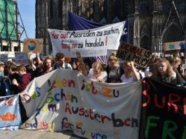 #Fridaysforfuture in Köln am Dom