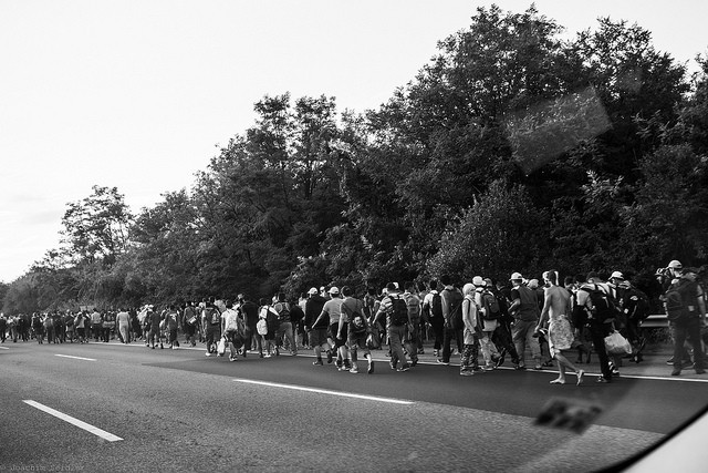 Refugees on the Hungarian M1 highway on their march towards the Austrian border Foto: Flickr photog_at